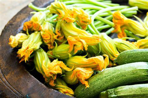 fiori di zucca in padella fiori di zucca in padella con zucchine ricetta