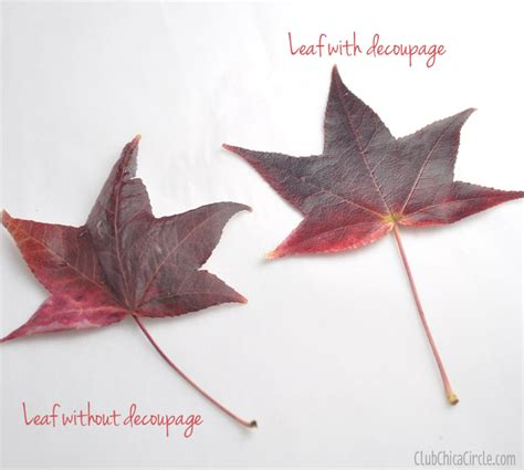 Decoupage With Leaves - fall leaf decoupaged pumpkin decorating club chica