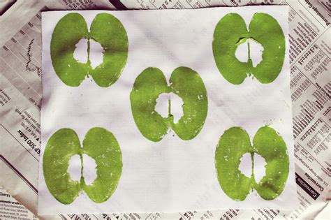 printing with fruit and vegetables 13 ideas for hand printing a beautiful mess