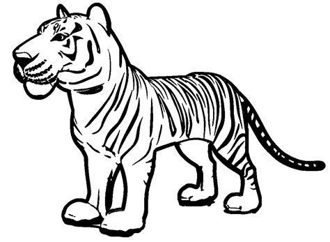 100 and tiger coloring page for coloring pages