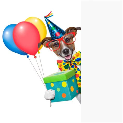 Happy Birthday Clip With Dogs Free by Birthday Clipart Clipart Collection Happy Birthday