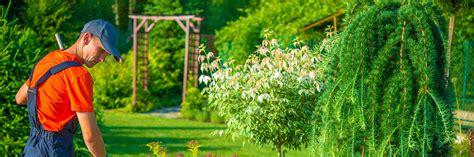 corso per giardiniere corso professione giardiniere percorso abilitante per