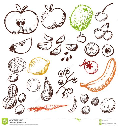 doodle fruit doodle set fruits and vegetables royalty free stock