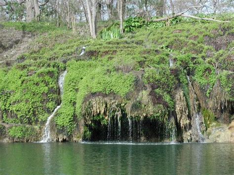 crockett gardens and falls water trail