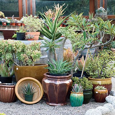 Garden Decorating Ideas by Great Garden Decorating Ideas Xcitefun Net