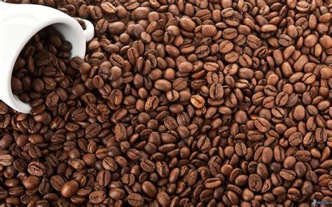 vasco fegato spappolato fegato spappolato bevi pi 249 caff 232 mario meliad 242