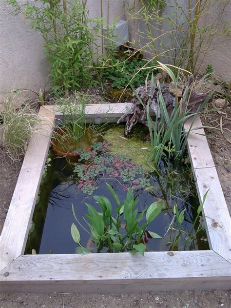 Bassin Pour Petit Jardin