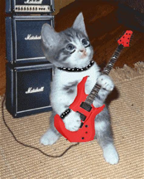 gid ubi most metal cat gif forums