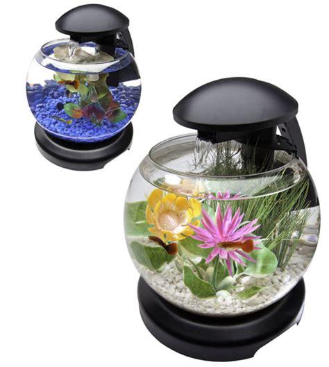 aquarium bowl design 13 fish bowl and aquarium design for fish lover design swan