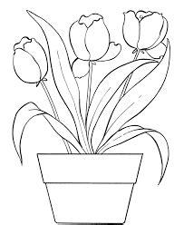dibujos de macetas con flores para colorear resultado de imagen para dibujos para pintar macetas