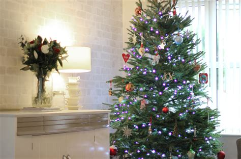 28 best how to decorate a real christmas tree how to