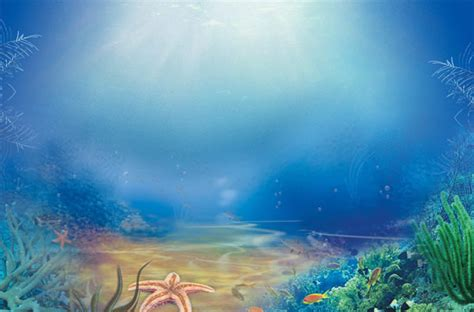 powerpoint themes underwater powerpoint backgrounds underwater www pixshark com