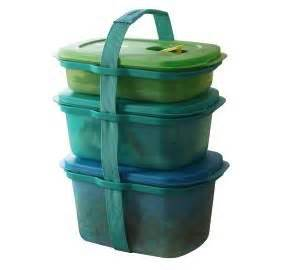 Tupperware Carry All Bowl 17 best images about lifetime tupperware products on