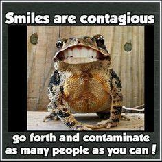 1000 images about dental sayings 1000 images about dental sayings quotes on