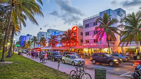 Best 35 Fun Things to Do & See in Miami   Activities & Attractions