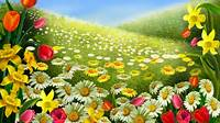 Spring Wallpapers HD Free Download 60  PixelsTalkNet