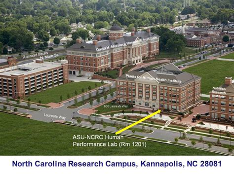 housing appstate housing appstate 28 images appalachian panhellenic mountaineer appalachian to