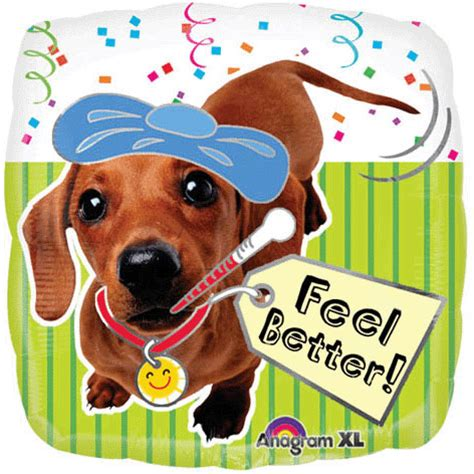 feel better puppy 18 quot feel better puppy ziggos