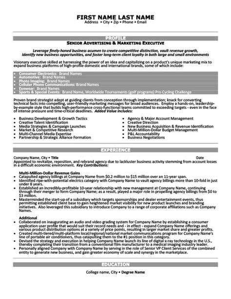 vice president of operations resume template premium