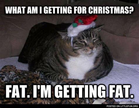 I M Fat Meme - littlefun what am i getting for christmas fat i m