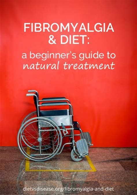 fibromyalgia a practitioner s guide to treatment fibromyalgia and diet a beginner s guide to