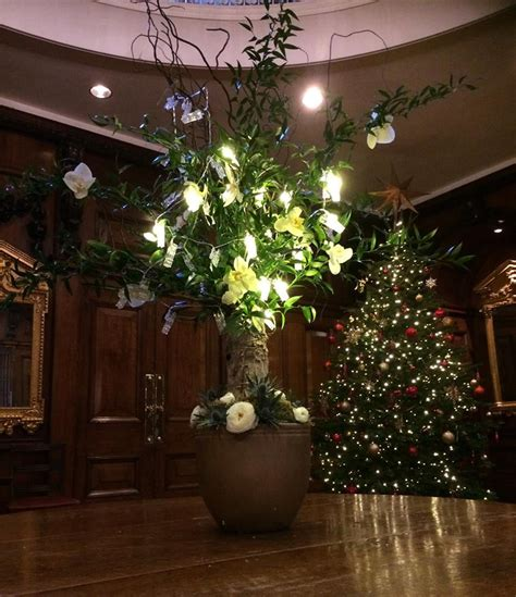 buy real christmas trees for delivery in london the have a merry fun filled christmas best decorated