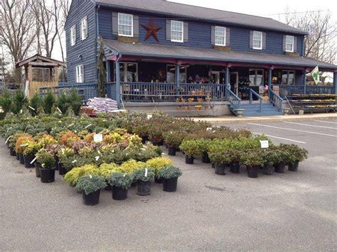 Garden Center Germantown Blue Tree Garden Center In Norristown Pa 610 277 1
