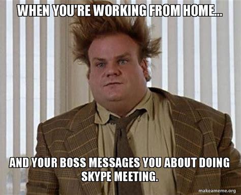 funny work  home memes  funny beaver