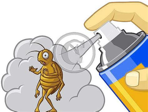 diy get rid of bed bugs diy get rid of bed bugs forever hometriangle