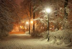 winter garden lights evening winter park alley lanterns road nature