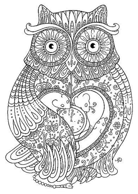 hard coloring pages of owls hoot owl coloring page free printable coloring pages hard