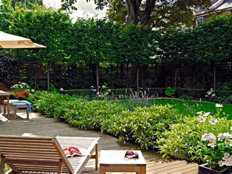how to create backyard privacy natural backyard landscaping ideas save money creating