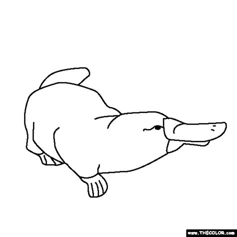 Free Coloring Pages Of Perry The Platypus Baby Platypus Coloring Page