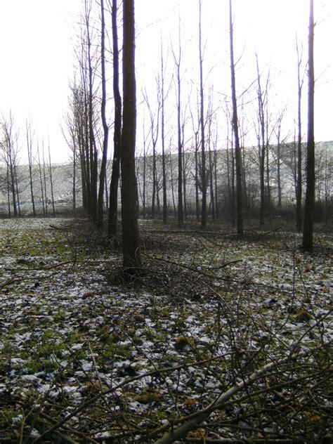 Outer Oren wouter den dooren foto s