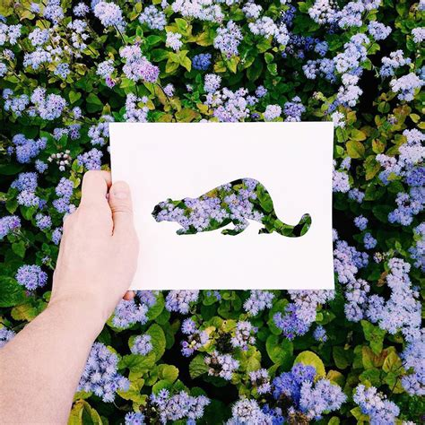 russian artist  beautiful backdrops  nature  fill