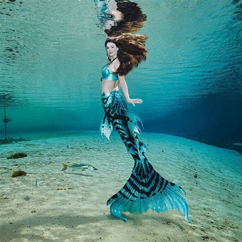 best 20 unicorns and mermaids ideas on mermaids exist do mermaids exist and