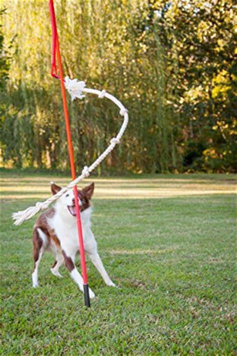 backyard dog toys tether tug interactive dog toy outdoor x large dog care