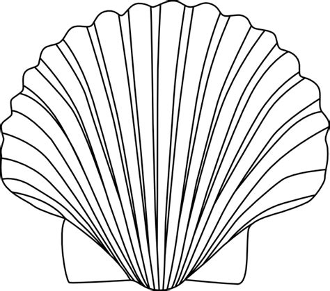 Shell Outline by Shell Clip At Clker Vector Clip Royalty Free Domain