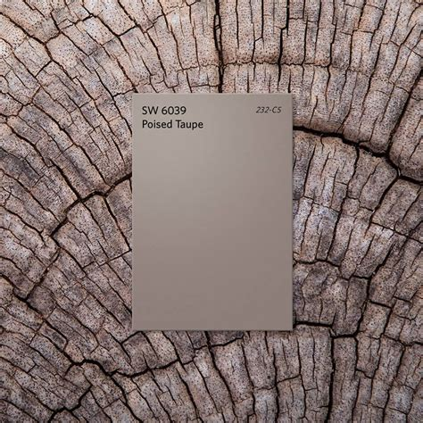 poised taupe taupe is the sherwin williams color of the year 2017 but