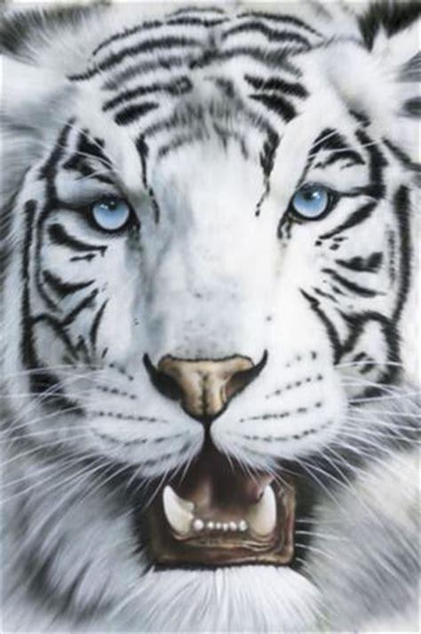 imagenes en 3d de tigres tigre de bengala blanco d grupouwa s blog