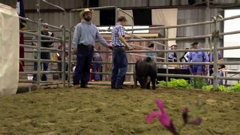 cuero auction brandon wells ffa auction sale 2012 cuero livestock show
