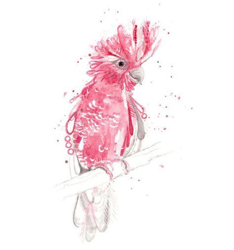watercolor tattoo artists qld australian cockatoo galah print a3 a2 a1 bird