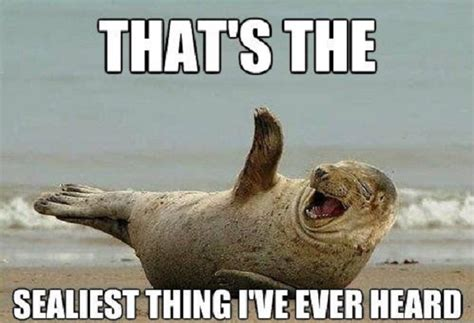 Hysterical Laughing Meme - sealiest thing gagthat