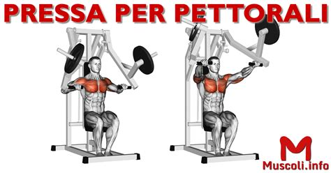 pettorali interni pressa per pettorali o chest press esercizio per