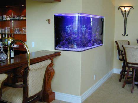 aquarium design inside 75 best images about aquariums on pinterest saltwater