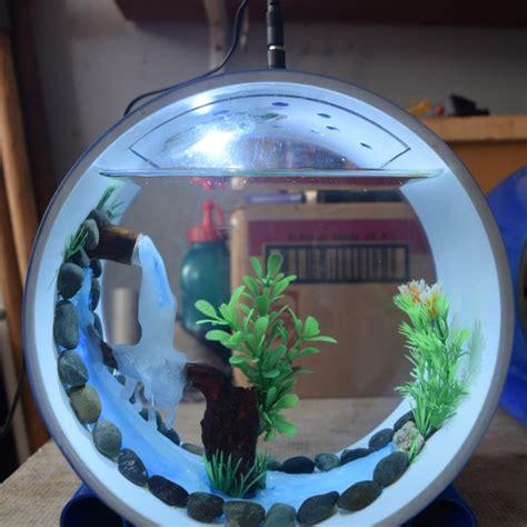 gambar aquarium  paralon rumah idaman
