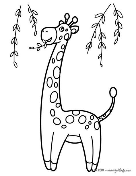 imagenes de jirafas para pintar image gallery jirafa para colorear
