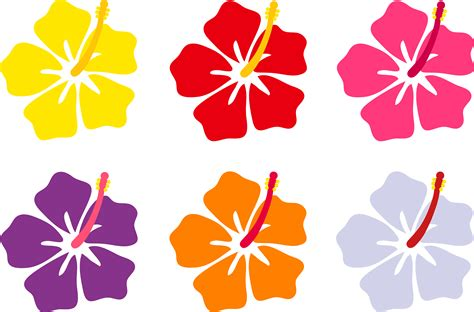 hibiscus pattern png hibiscus clipart hawaiian theme pencil and in color