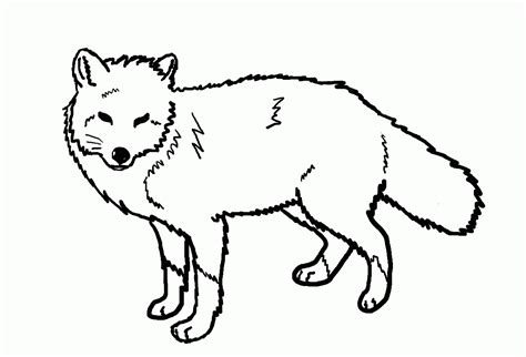 fox coloring page kids coloring