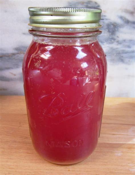 fruit kvass how to make fruit kvass with probiotic benefits real